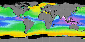 Sea surface density, December 2011