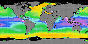Sea surface density, January 2015