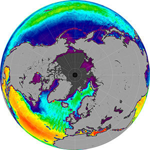 Sea surface salinity in the Northern Hemisphere, August 2014