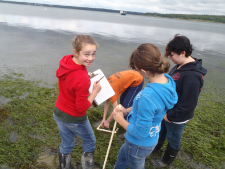 Teaching science by ocean inquiry