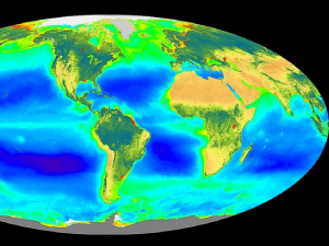 SeaWiFS global biosphere