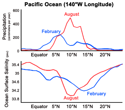Precipitation and salinity along 140°W longitude for February (blue) and August (red)